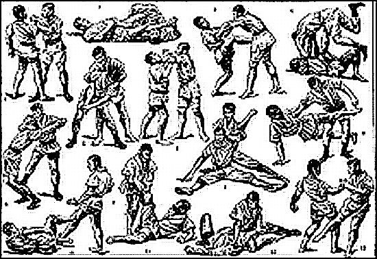 teknik judo